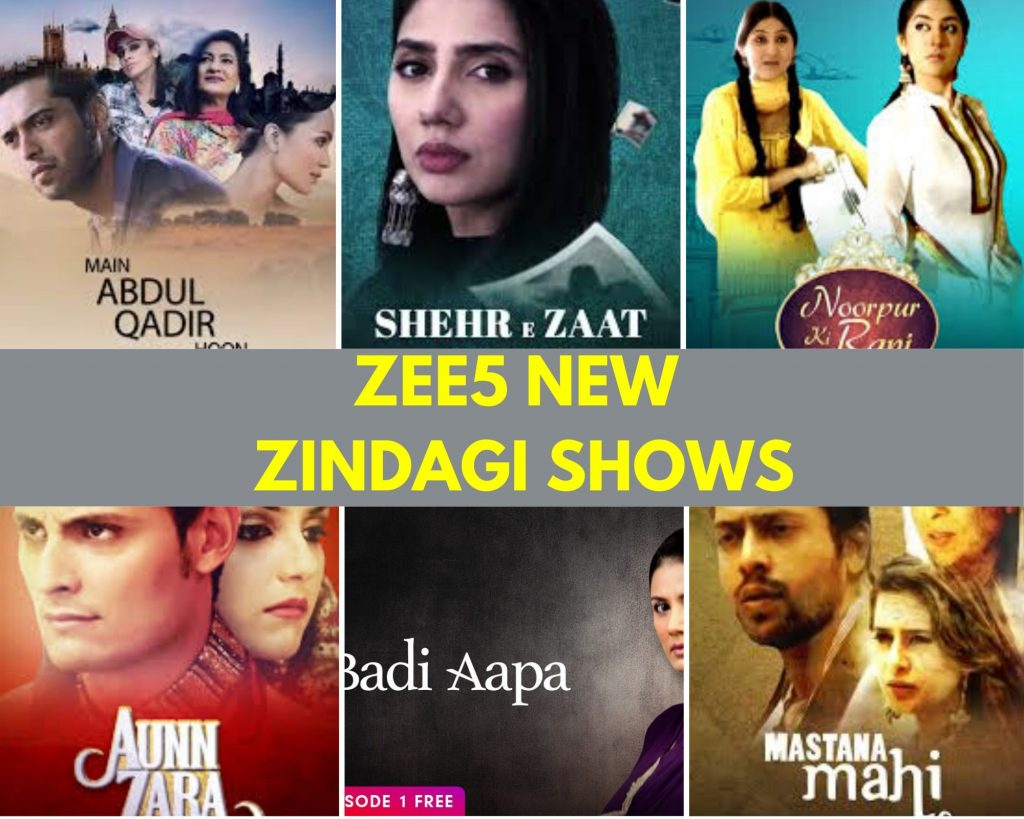 ZEE5, ZEE5 Zindagi Shows, OTT, Reviews, MommyShravmusings